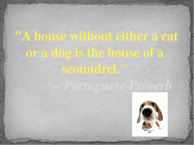 """A house without either a cat or a dog is the house of a  scoundrel.""        ..."