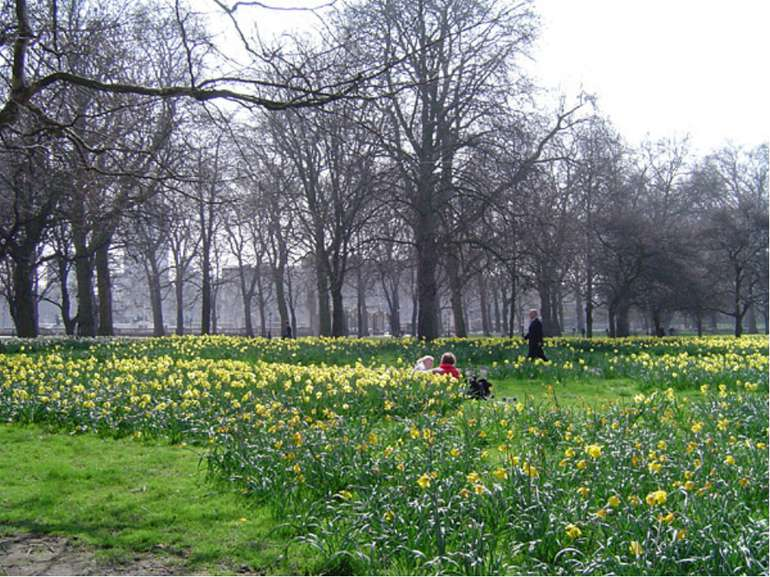 Green Park (officially The Green Park) is one of the Royal Parks of London. B...