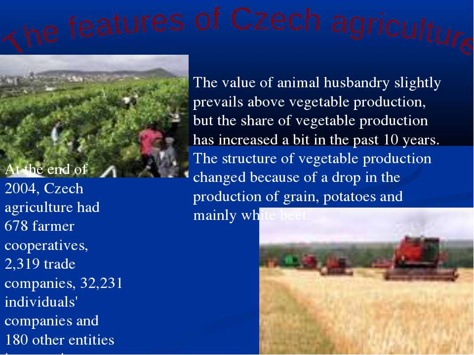 The value of animal husbandry slightly prevails above vegetable production, b...