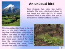New Zealand has very few native animals. The kiwi, a bird which lives in the ...