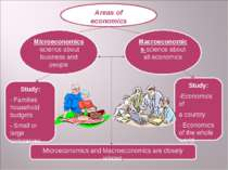 Areas of economics Microeconomics-science about business and people Macroecon...