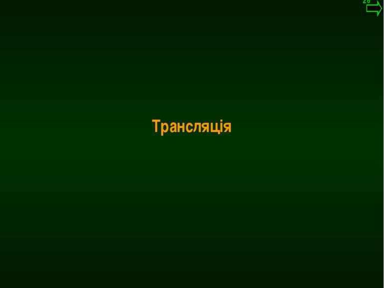 М.Кононов © 2009 E-mail: mvk@univ.kiev.ua Трансляція *