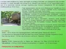 Головна композиційна вісь парку проходить по річищу Кам'янки, де споруджено р...