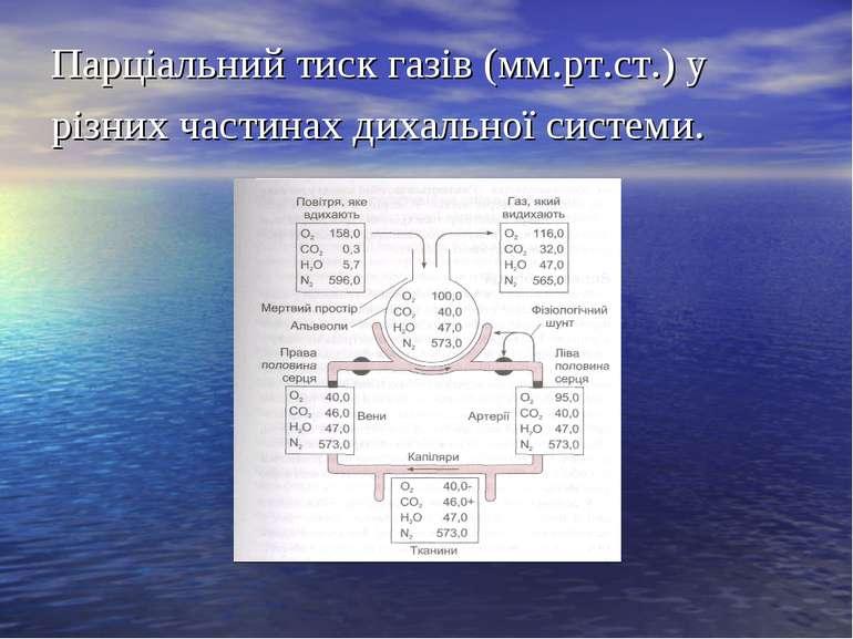 Парціальний тиск газів (мм.рт.ст.) у різних частинах дихальної системи.