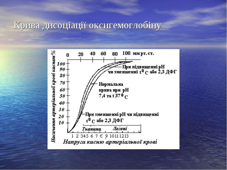 Крива дисоціації оксигемоглобіну