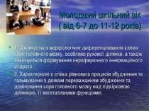 Молодший шкільний вік ( від 6-7 до 11-12 років) 1. Закінчується морфологічне ...