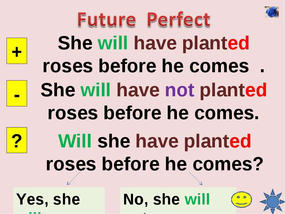 She will have planted roses before he comes . + - ? She will have not planted...