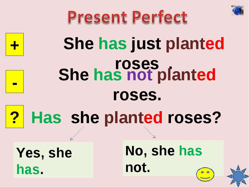 She has just planted roses . + - ? She has not planted roses. Has she planted...