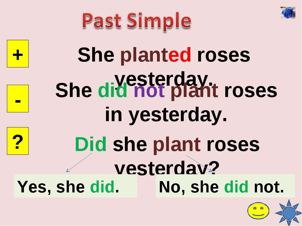 She planted roses yesterday. + - ? She did not plant roses in yesterday. Did ...