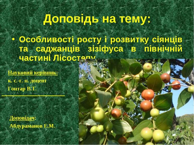 Доповідь на тему: Особливості росту і розвитку сіянців та саджанців зізіфуса ...