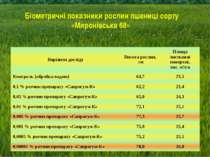Біометричні показники рослин пшениці сорту «Миронівська 68» Варіанти досліду ...