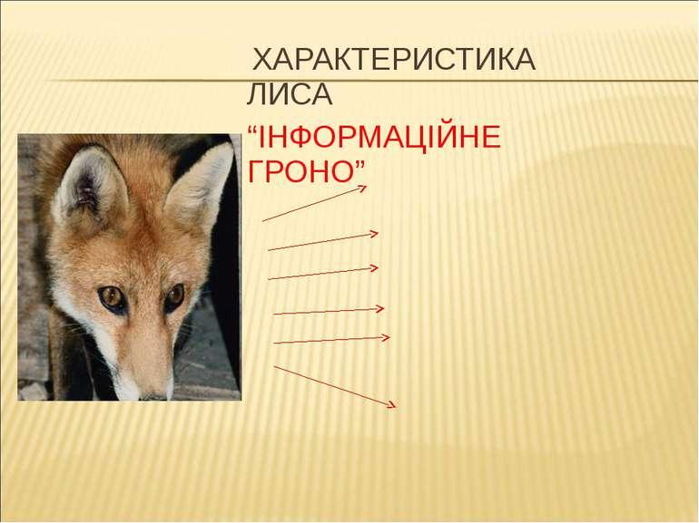 """ХАРАКТЕРИСТИКА ЛИСА """"ІНФОРМАЦІЙНЕ ГРОНО"""""""