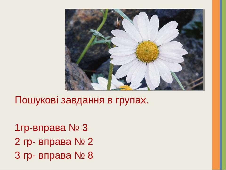 Пошукові завдання в групах. 1гр-вправа № 3 2 гр- вправа № 2 3 гр- вправа № 8