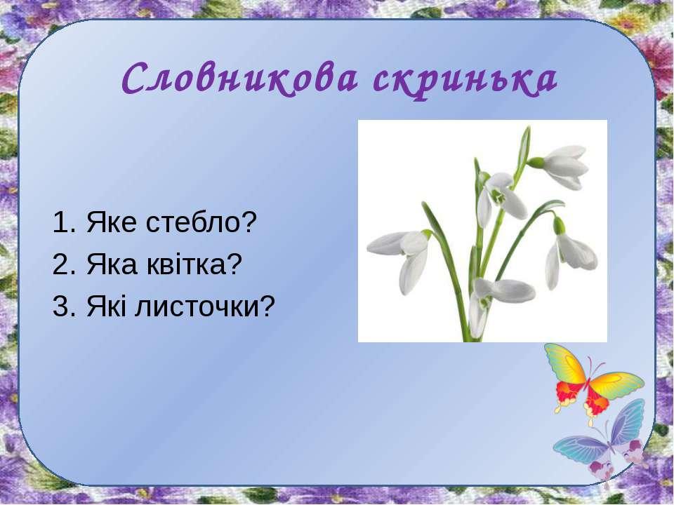 Словникова скринька 1. Яке стебло? 2. Яка квітка? 3. Які листочки?