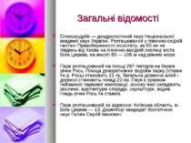 Загальні відомості Олександрі я — дендрологічний парк Національної академії н...