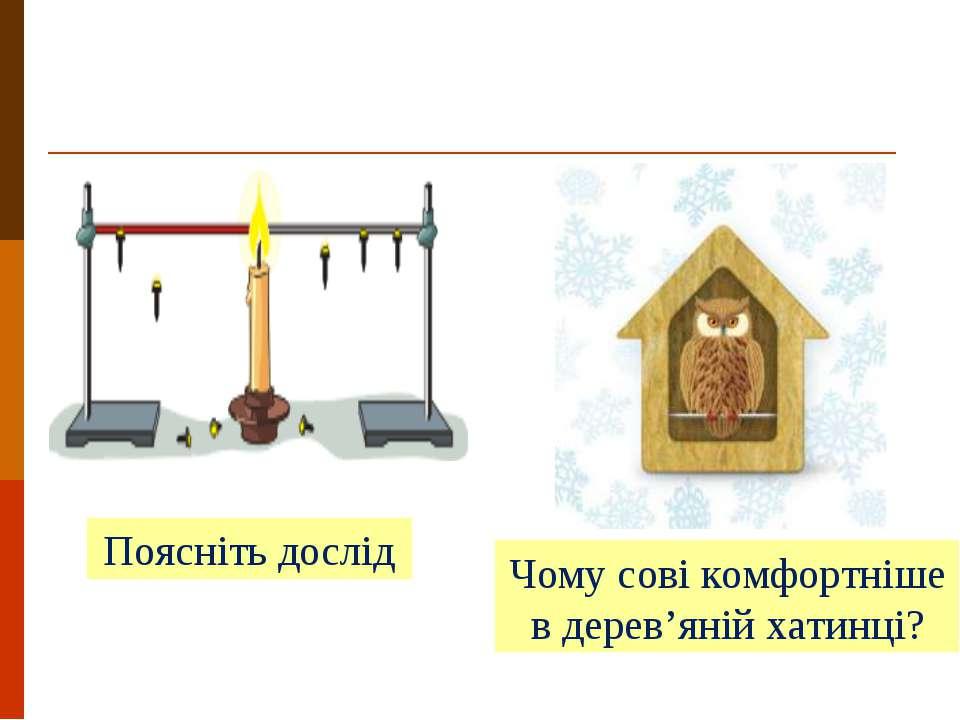 Поясніть дослід Чому сові комфортніше в дерев'яній хатинці?