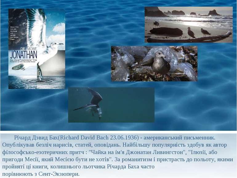 Річард Дэвид Бах(Richard David Bach 23.06.1936) - американський письменник. О...