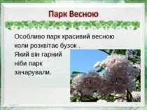 Особливо парк красивий весною коли розквітає бузок . Який він гарний ніби пар...