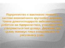 Підприємство є важливою ланкою у системі економічного кругообігу держави. Чле...