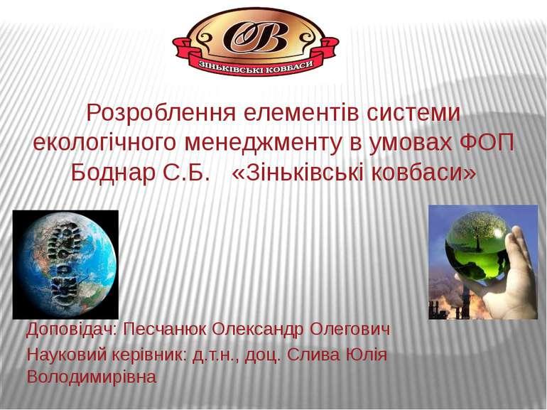 Розроблення елементів системи екологічного менеджменту в умовах ФОП Боднар С....