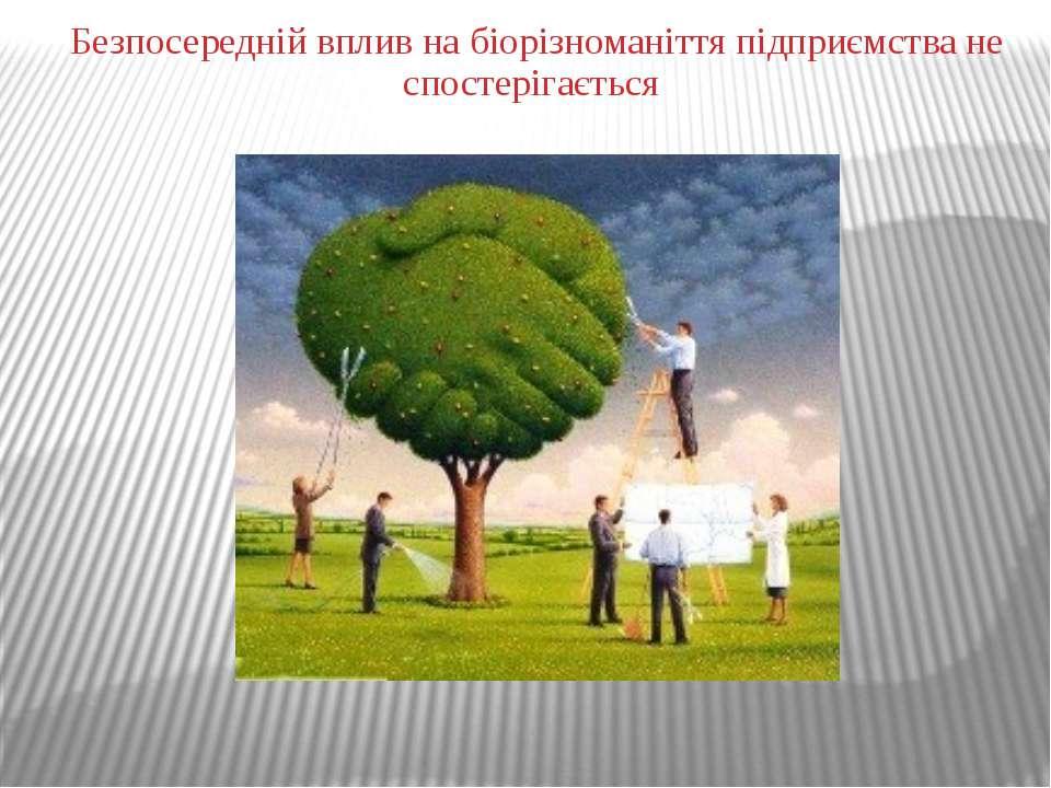Безпосередній вплив на біорізноманіття підприємства не спостерігається