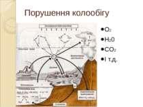 Порушення колообігу речовин O2 H20 CO2 І т.д.