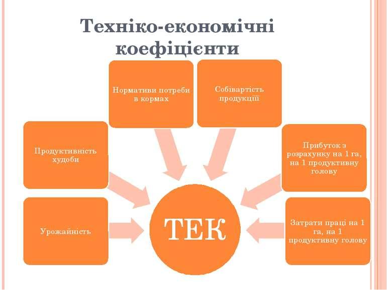 Техніко-економічні коефіцієнти