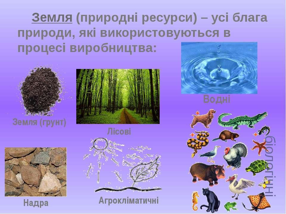 Земля (природні ресурси) – усі блага природи, які використовуються в процесі ...