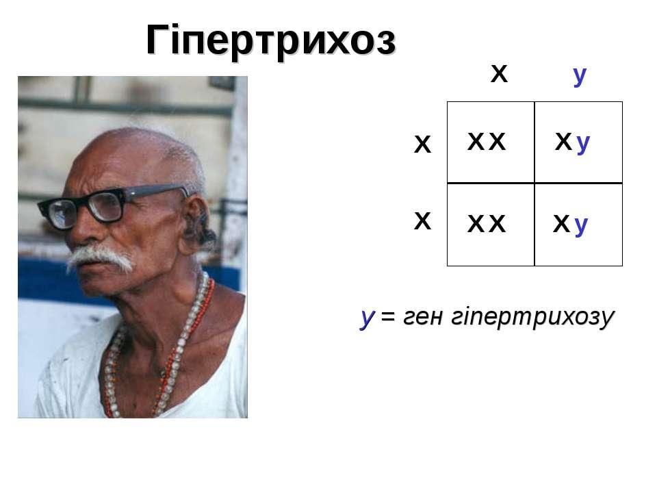 X X X X X y X y Гіпертрихоз y = ген гіпертрихозу