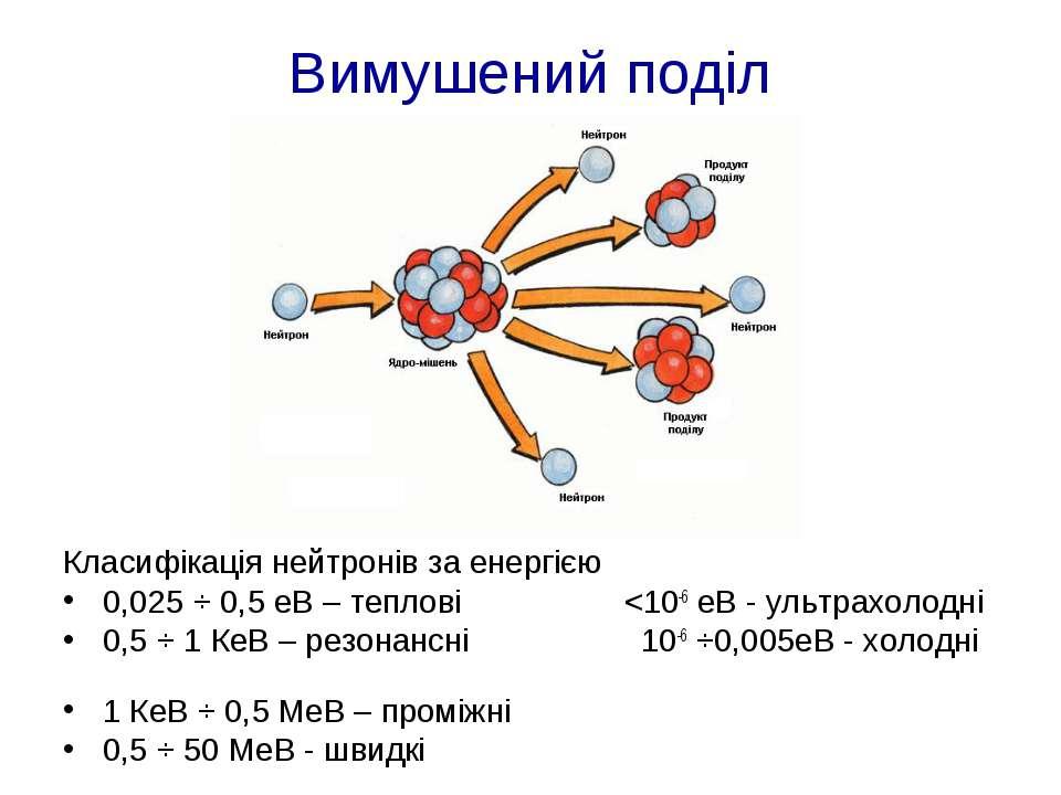 Вимушений поділ Класифікація нейтронів за енергією 0,025 ÷ 0,5 еВ – теплові