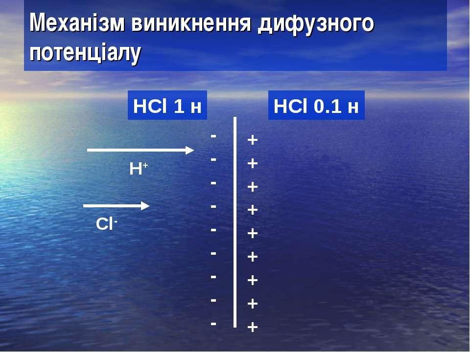 Механізм виникнення дифузного потенціалу HCl 1 н HCl 0.1 н H+ Cl- + + + + + +...
