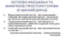 КІСТКОВО-ФАСЦІАЛЬНІ ТА МІЖМ'ЯЗОВІ ПРОСТОРИ ГОЛОВИ (в скроневій ділянці) Міжап...