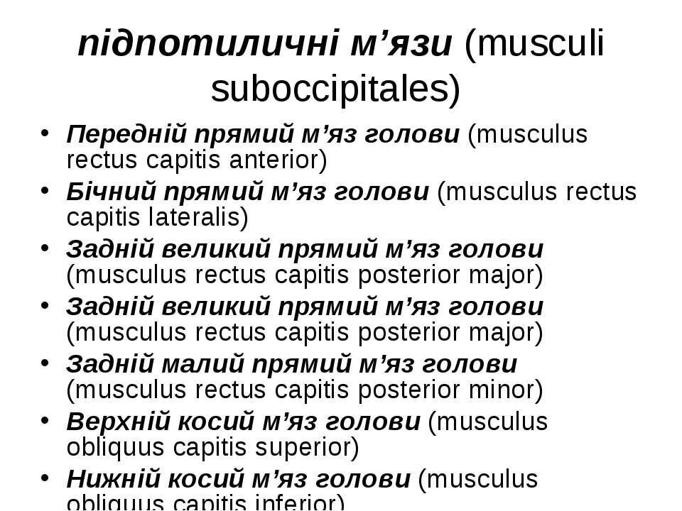 підпотиличні м'язи (musculi suboccipitales) Передній прямий м'яз голови (musc...