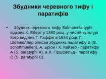 Збудники черевного тифу і паратифів Збудник черевного тифу Salmonella typh...