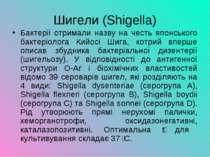 Шигели (Shigella) Бактерії отримали назву на честь японського бактеріолога Ки...
