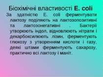 Біохімічні властивості E. coli За здатністю Е. сoli ферментувати лактозу поді...