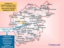 Сквирський район Сквирська спеціалізована ЗОШ І-ІІІ ст. з поглибленим вивченн...