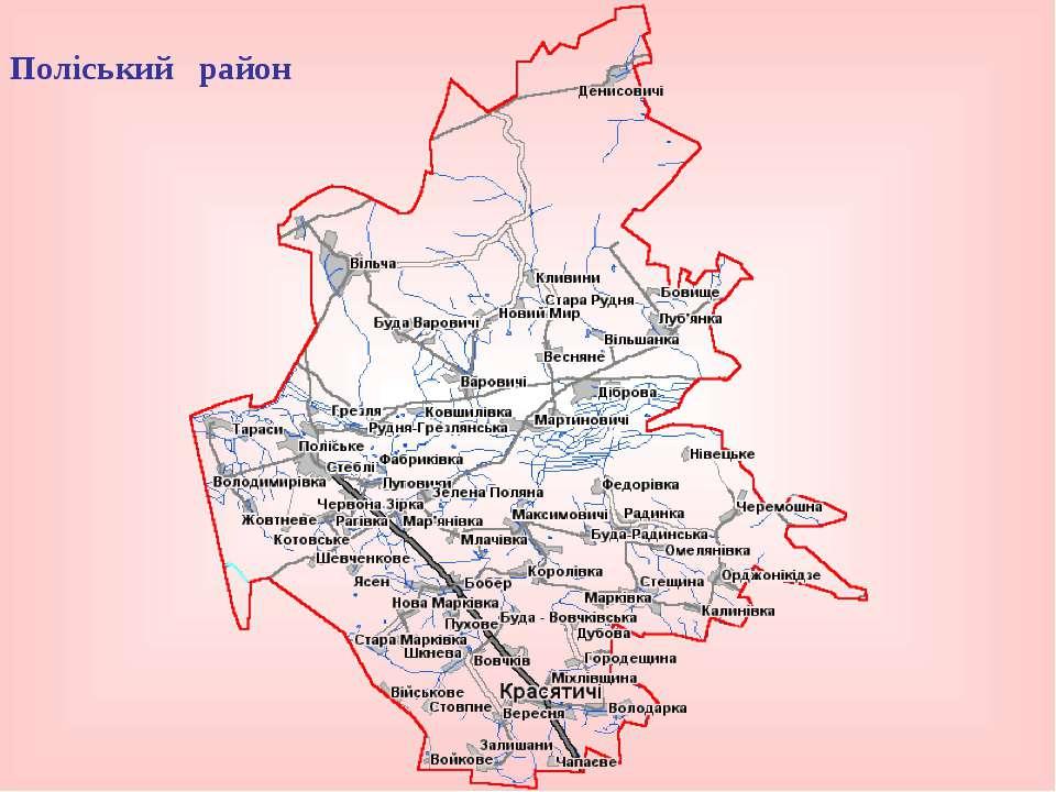 Поліський район