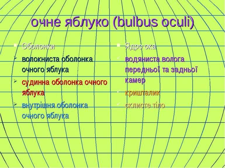 очне яблуко (bulbus oculi) Оболонки волокниста оболонка очного яблука судинна...
