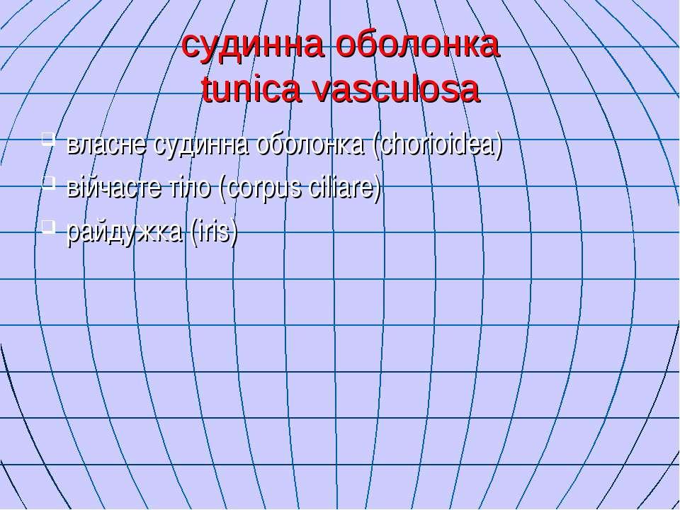 судинна оболонка tunica vasculosa власне судинна оболонка (chorioidea) війчас...