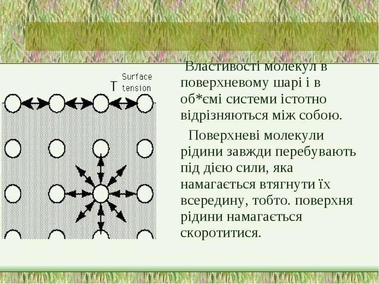 Властивості молекул в поверхневому шарі і в об*ємі системи істотно відрізняют...