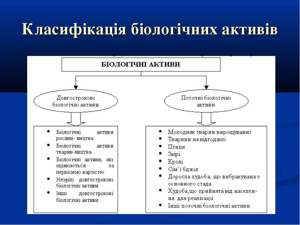 Класифікація біологічних активів