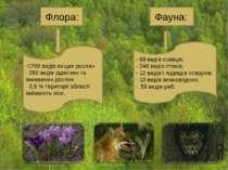 - 69 видів ссавців; 246 видів птахів; 12 видів і підвидів плазунів; 10 видів ...