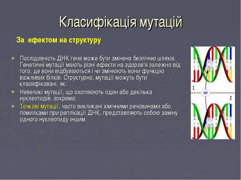 Класифікація мутацій За ефектом на структуру Послідовність ДНК гена може бути...