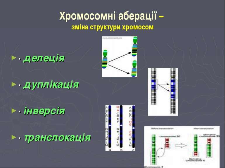 Хромосомні аберації – зміна структури хромосом · делеція ·дуплікація · інвер...
