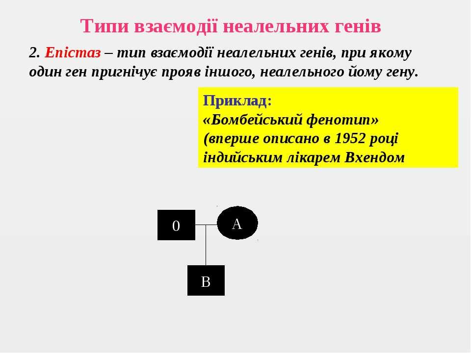 Типи взаємодії неалельних генів 2. Епістаз – тип взаємодії неалельних генів, ...