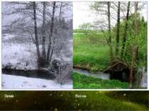 Зима Весна