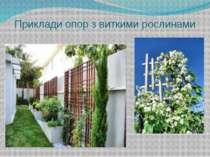 Приклади опор з виткими рослинами