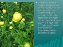 Флористичні пропорції – співвідношення середньої кількості видів у родині, ро...