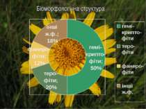 Біоморфологічна структура